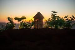 dekorativt litet tr?hus p? solnedg?ngbakgrunden arkivbild
