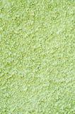Dekorativt ljus - grön lättnadsmurbruk på väggen Arkivfoton
