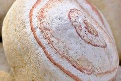 Dekorativt marmorera kiselstenar royaltyfri foto