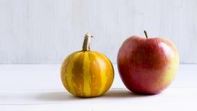Dekorativt pumpa och äpple arkivbild