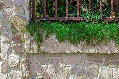 Dekorativt staket 12 Royaltyfri Fotografi
