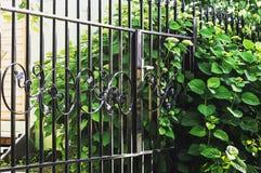 Dekorativt staket för metall med dörren och port av det moderna staketet Ideas för stildesignmetall royaltyfria bilder