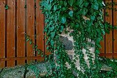 Dekorativt staket som göras av plankor 3 Arkivfoton