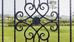 dekorativt staketjärn Royaltyfri Foto