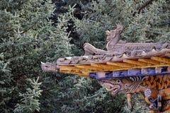 Dekorativt tak i den naturliga bakgrunden Royaltyfri Foto
