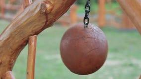 dekorativt trä för boll arkivfilmer