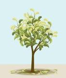 Dekorativt träd Fotografering för Bildbyråer