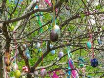 Dekorativt träd som dekoreras med dekorerade påskägg Medborgare Tadic Christian Orthodox religiös festival Arkivfoton