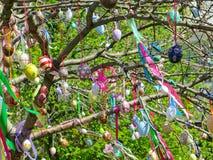 Dekorativt träd som dekoreras med dekorerade påskägg Medborgare Tadic Christian Orthodox religiös festival Royaltyfri Fotografi