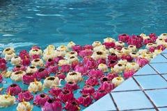 dekorera det trädgårds- damm för fritidlooklotusblomma Royaltyfria Foton
