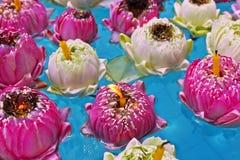 dekorera det trädgårds- damm för fritidlooklotusblomma Arkivbilder