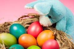 Dekorera påskkaninen och färgrika påskägg Fotografering för Bildbyråer