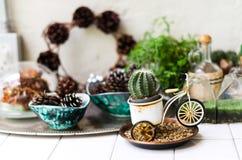 Dekorera tabellen med kaktuns i beröm Royaltyfri Bild