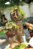 dekorera växttabellen royaltyfria bilder
