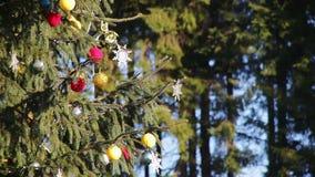 Dekorerad julgran på gatan stock video