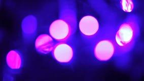 Dekorerad julgrancloseup upplyst girland med ficklampor stock video