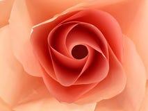 Dekorerad ros för Closeuprosa färgpapper Royaltyfria Foton