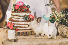 Dekorerad tabell för två som dekoreras med wood bakgrund för blom- sammansättning med 2 kaniner royaltyfri bild