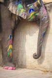 Dekorerade elefanter i Jaleb Chowk i Amber Fort i Jaipur, Indi Royaltyfria Foton