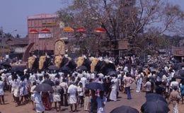 Dekorerade elefanter på Thrissur Pooram, Kerala Fotografering för Bildbyråer
