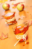 dekorerade exponeringsglas för äpple cid arkivbild
