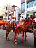 Dekorerade kamel i religiös procession i gatorna av Ujjain under melaen 2016, Indien för simhasthmaha kumbh Arkivbilder