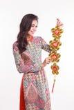 Dekorerar det bärande intrycket ao lyckliga dai som för den härliga vietnamesiska kvinnan rymmer, objekt Royaltyfri Bild