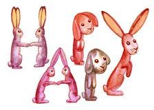 Dekorerar LYCKLIGA röd-apelsin för inskrift kaniner Arkivbild