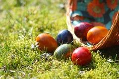 dekorerat easter ägggräs Royaltyfri Bild