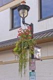 Dekorerat gataljus i Camas Washington Royaltyfri Fotografi