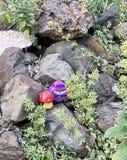 Dekorować skały w ogródzie obrazy royalty free