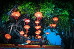 Dekorować wiszące Chińskie latarniowe lampy na drzewie Fotografia Royalty Free