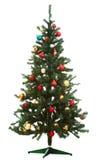dekorujący firtree zdjęcie royalty free