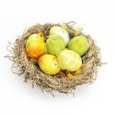 Dekorujący jajka dla wielkanocy w gniazdeczku Fotografia Royalty Free