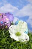 Dekorujący Wielkanocni jajka w trawie fotografia stock