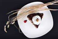 Dekorujący Czekoladowy tort Zdjęcie Royalty Free