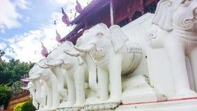 dekoruje domowe słoń rzeźby używać ścianę s Fotografia Royalty Free