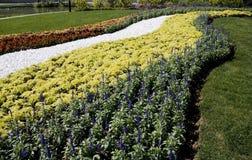 dekoruje kwiaty Zdjęcia Royalty Free