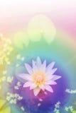 dekoruje ogrodowego czas wolny spojrzenia lotosowego staw Zdjęcia Royalty Free