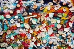 Del av Berlin Wall med tuggummin royaltyfri foto