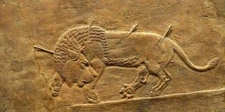 Del av den gammala väggen med lionen Royaltyfri Foto