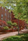 Del av den George Washington University universitetsområdet Royaltyfri Foto