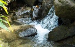 Del av den Ngao vattenfallet i Ranong, Thailand Landskap av vattenfallet som kraschar den stora stenen på det klara naturliga vat royaltyfri bild