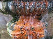 Del av en springbrunncoverd med mossa i villan Borghese i Rome royaltyfri fotografi