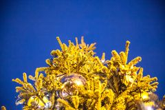 Del av julgranen Dekorerat med gula brytningar royaltyfri foto