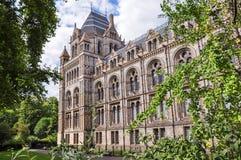 Del av naturhistoriamuseumbyggnad i London Arkivfoton