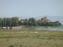 Del av sjön av Sevan i Armenien med djur i förgrunden och en kyrka och bergen i avstånd fåtöljer Fotografering för Bildbyråer