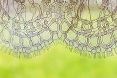 Del av snöra åtklänningen på den gröna naturliga bakgrunden Royaltyfri Bild