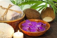 Del bambú y de coco de la leche del balneario todavía del cosmético vida Imágenes de archivo libres de regalías