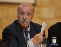Del bosque 029. Spain soccer national team coach and former world champion vicente del Bosque gestures as he answer to  reporters during a media comference in Royalty Free Stock Photos